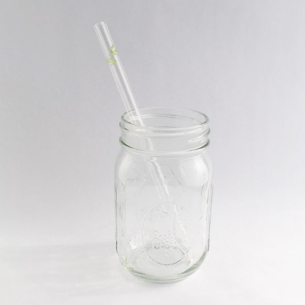 Post Landfill Action Network Glass Straw