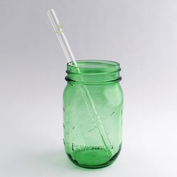 Post-Action Landfill Network Glass Straw