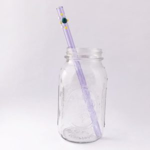 Delia Long Smoothie Glass Straw