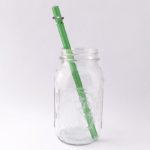 Enchanted Long Smoothie Glass Straw