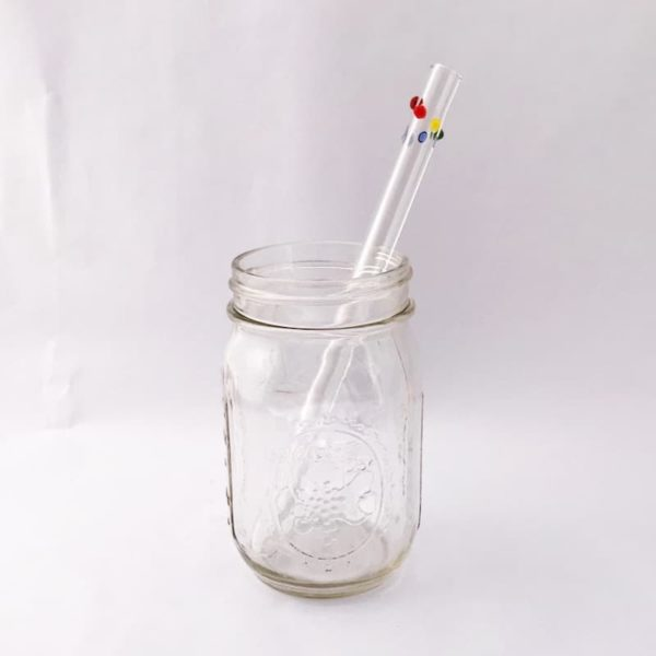 The Colorful Kitchen Rainbow Glass Straw
