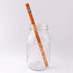 Sundance Long Smoothie Glass Straw