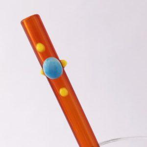 Sundance Glass Straw