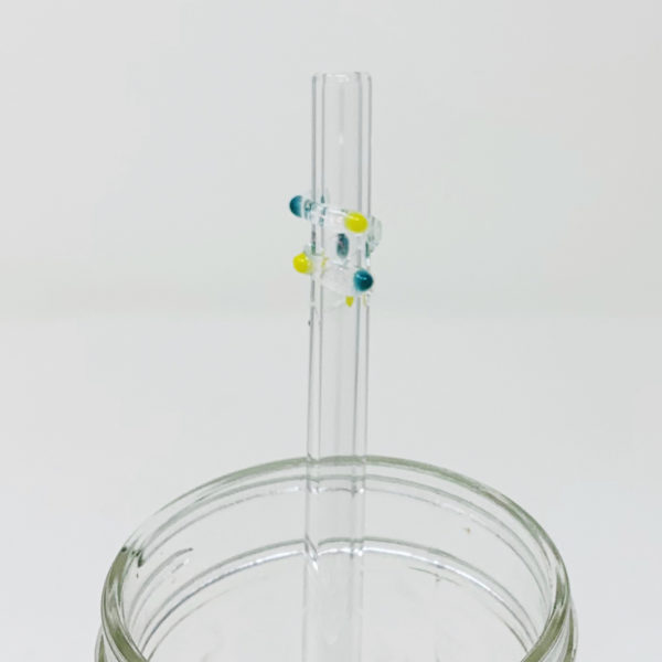 Clear Enchanted Glass Straw