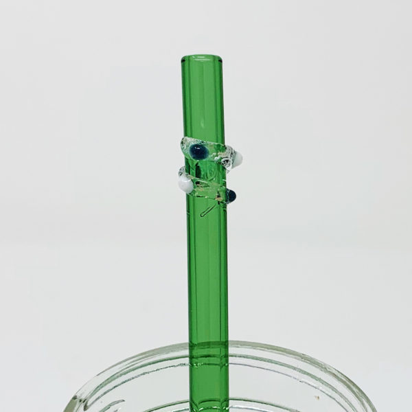 Going Green Enchanted Glass Straw